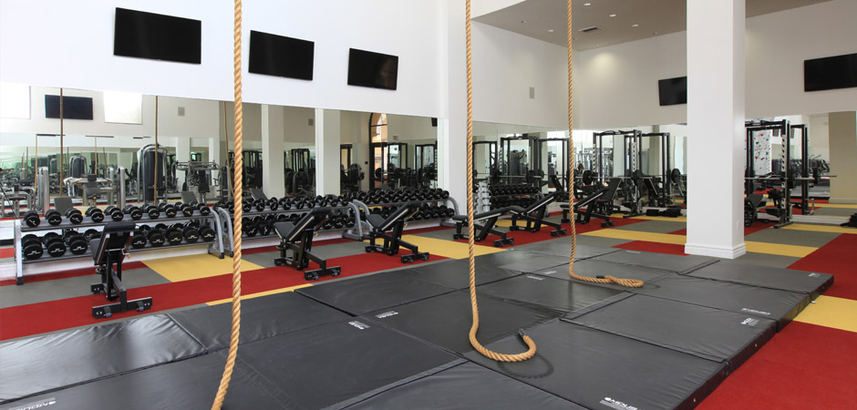 Three Story, State-Of-The-Art Fitness Facility
