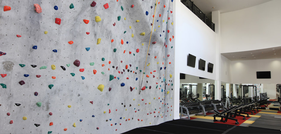 Challenge Yourself on the Climbing Wall